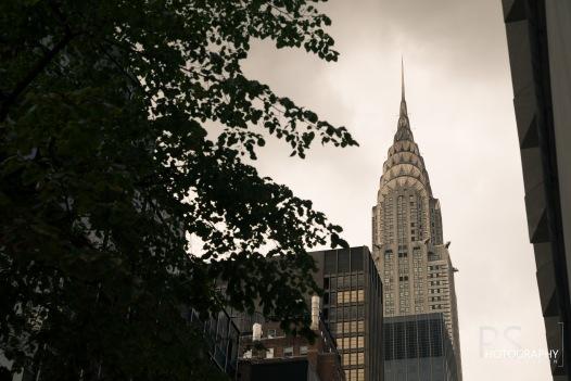 NY Day1 (5)